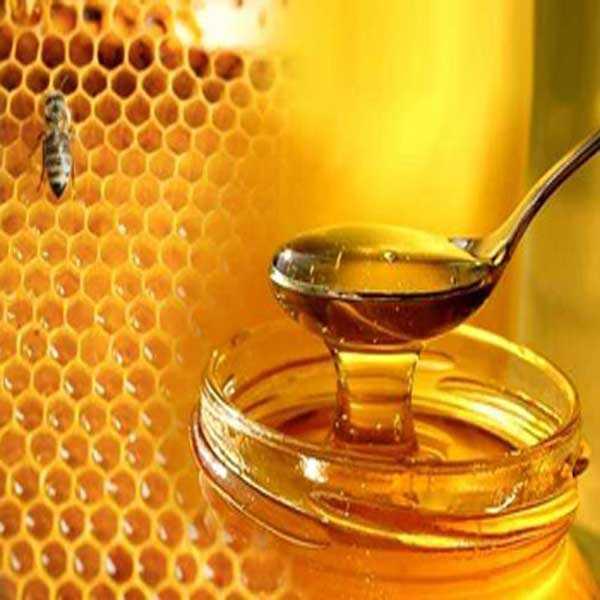 عسل ارگانیک